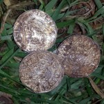 Saxon Coins Unearthed